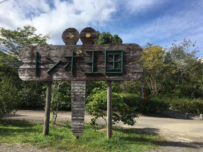 トンボ王国